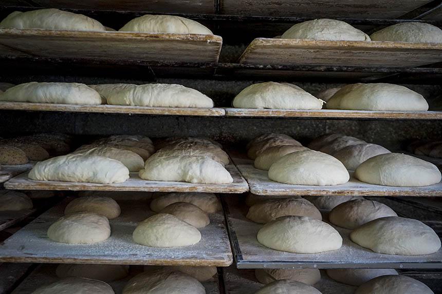 Obrador - Panaderia La Moderna